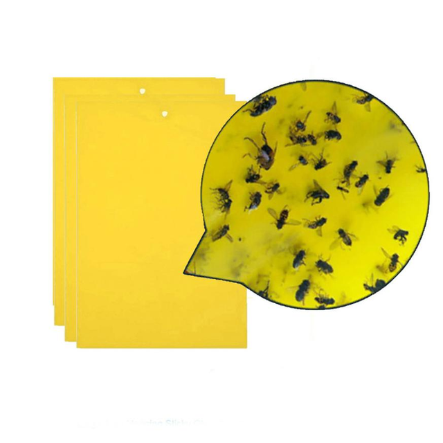 10pcs Strong Flies Traps Bugs Sticky Board Catching Aphid Insects Pest Killer Outdoor Fly Trap for Aphids Fungus GnatsLeaf