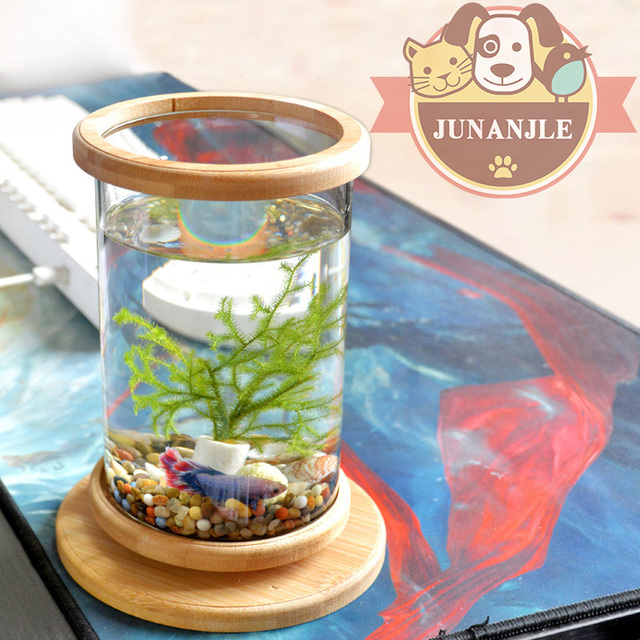 1pcs Glass Betta Fish Tank Mini Fish Tank Decoration Accessories Rotate Bamboo Base Decoration Fish Bowl Aquarium Accessories Buy Inexpensively In The Online Store With Delivery Price Comparison Specifications Photos
