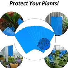 Blue Board Convenient Economic Strong Flies Traps Bugs Sticky Board Pest Killer Double Side Orchard Fly Trap Aphids Fungus