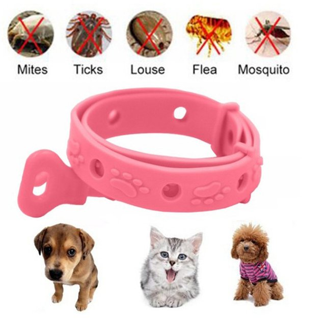 1PCP et Dog Cat Collar Neck Ring Leave Away From Flea Tick Mite Louse Remedy Pet Supplies