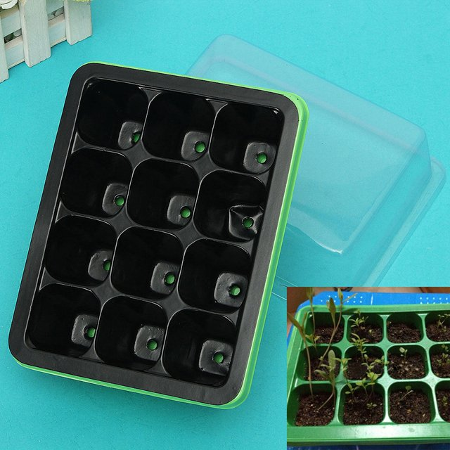 Lightbox Seeds Plant Seeds 12 Cells Hole Case* Box Grow Acrylic Storage Box High Propagation Tray