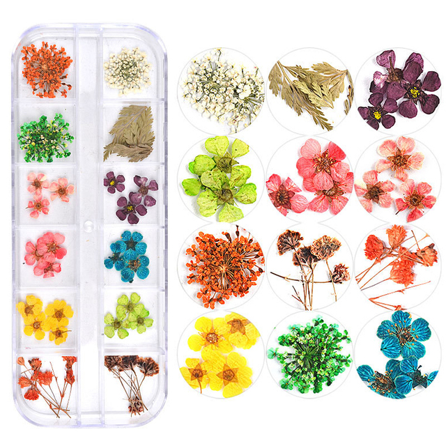 ICYCHEER Colorful 3D Decorated 12 Style Real Dry Dried Flower For UV Gel Acrylic Nail DIY Art Tips Nail Art Decoration