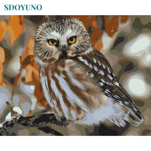 SDOYUNO Frame Owl Animals DIY Painting By Numbers Acrylic Canvas Wall Art Picture Painting Calligraphy For Home Decor 40x50cm