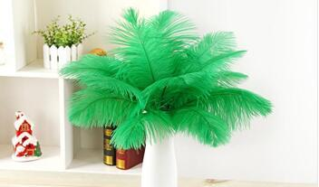 wholesale 50pcs 30-35cm/12-14inch high quality Green fluffy Ostrich Feather Plume wedding decoration craft /DIY accessories