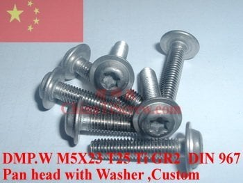 Titanium screws M5X22.5 DIN 967 T25 Driver Ti GR2 Polished 10 pcs