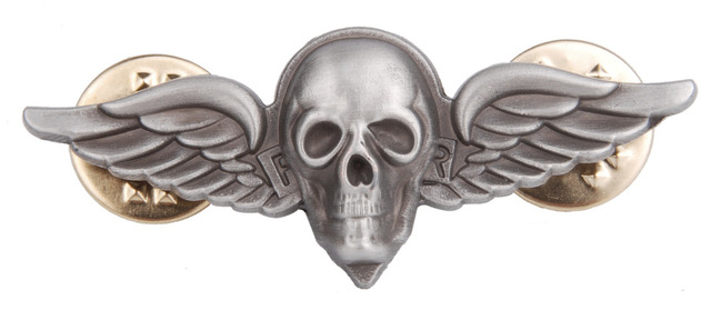 US ARMY AIRBORNE PARACHUTE WING METAL BADGE PIN SKULL INSIGNIA - 38054