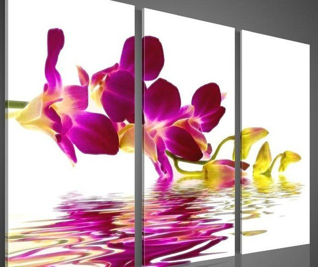 hand-painted  wall art  pink Water red flowers home decoration Landscape oil painting on canvas 3pcs/set framed ready to hang
