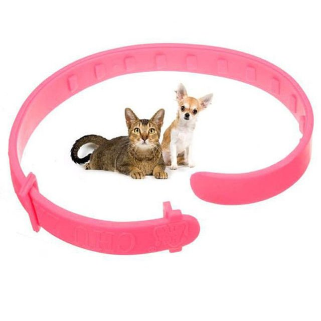 Novelty Pet Collar Neck Ring Leave Away From Flea Tick Mite Louse Remedy animal accessories