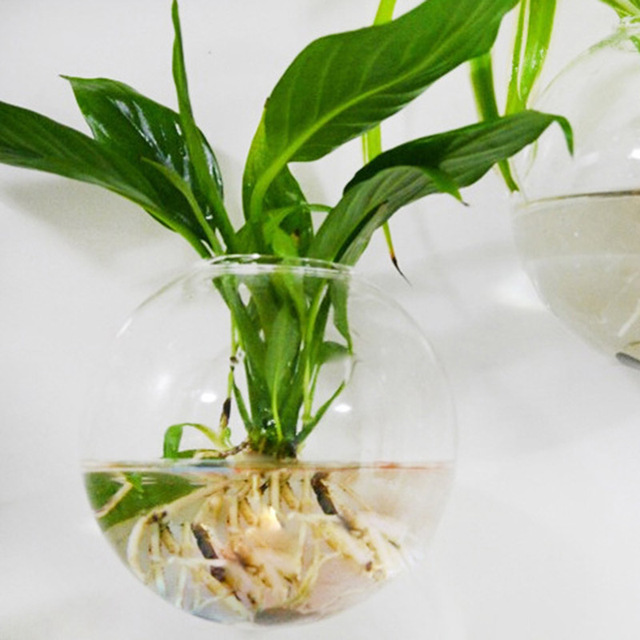 Glass Hanging Vase Terrarium Hydroponic Plant Pot Flower DIY Home Table Wedding Decor Flower Vase Aquatic Plants Home Wall Deco