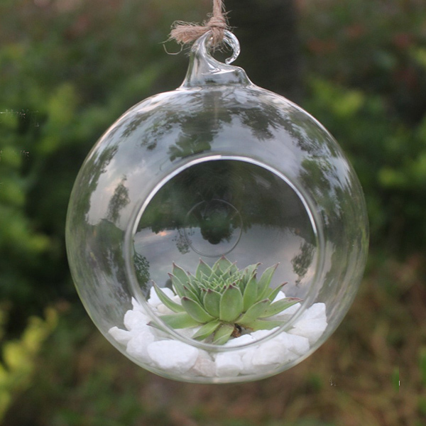 Transparent Glass Vase for Home Garden Decor Decor Vase 10cm Round