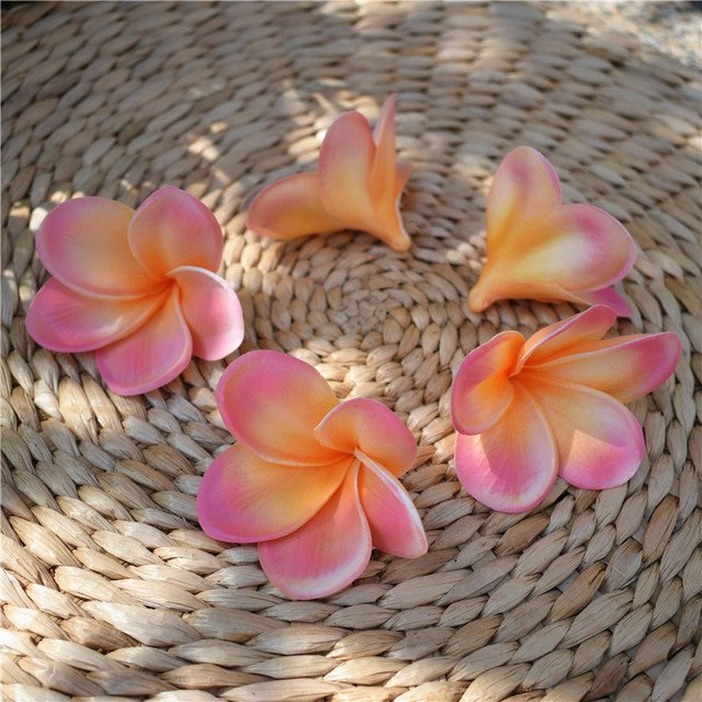 20pcs Light Coral frangipani Plumerias Natural Real Touch Flowers artificial Flower heads for cake decoration wedding bouquets