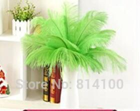wholesale 50pcs 30-35cm/12-14inch apple green Color fluffy Ostrich Feather wedding Party decoration craft /DIY accessories