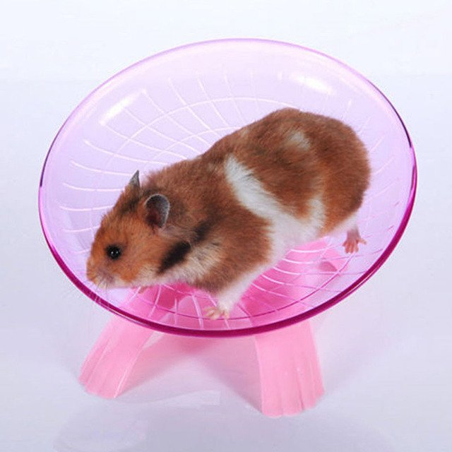 Hamster Exercise Flying Saucer Wheel Mice Gerbil Fitness Gyro Running Game Toy