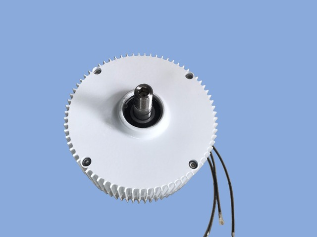 Professional production of PMG 300w 12/24v permanent magnet generator