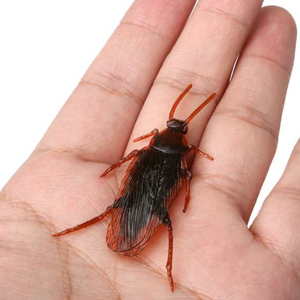 Shock Toys Simulation Cockroaches Xiaoqiang Insect  Magic Props @Z64