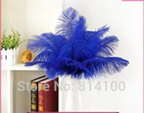 wholesale 50pcs 30-35cm/12-14inch high quality Royalblue Color fluffy Ostrich Feather wedding decoration craft /DIY accessories