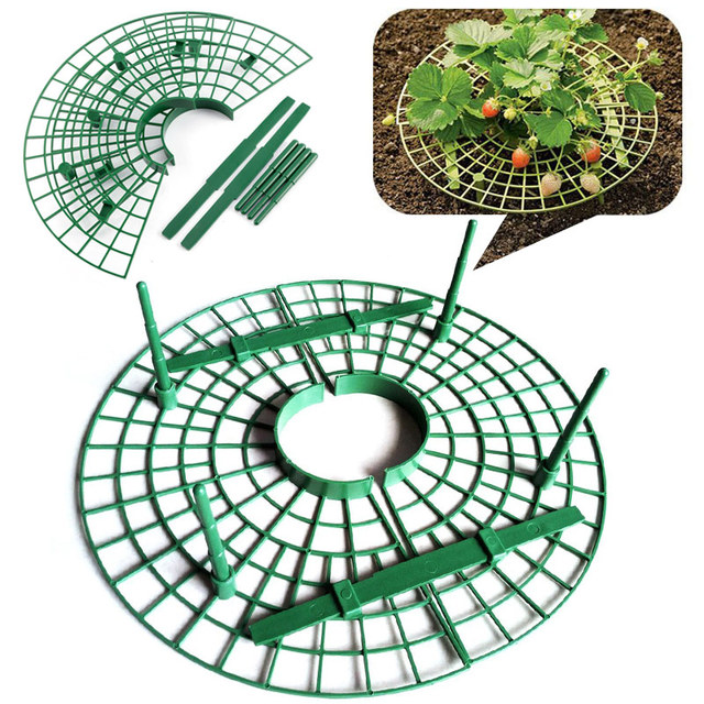 Yard Strawberry Growing Strawberry Planting Strawberry Supports Creative Plastic Convenient Outdoor Vegetables