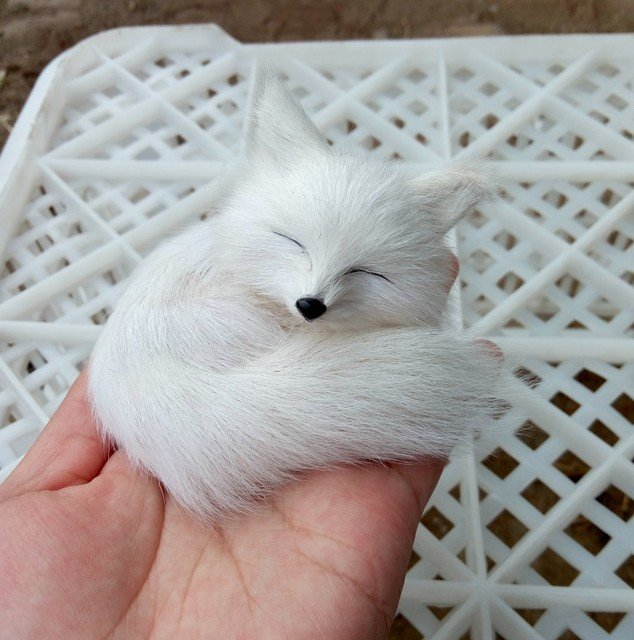 mini simulation sleeping fox toy resin&fur white fox doll gift about 8.5x4.5cm 1008