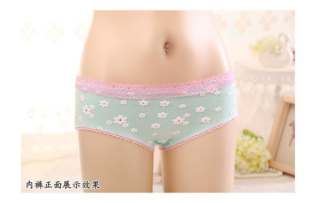 2018 Hot sale Brand Sexy &Everyday Floral Lace Casual CalcinhaFemale Underwear Women Women's Panties Breathable Briefs