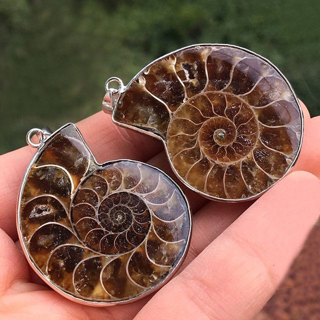 Metal Wrapped Natural Ammonite stone Opened Pendants Beads