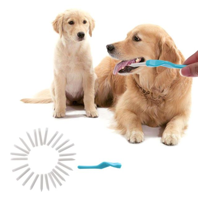 25pcs/set Toothpicks Tooth Brush for Dogs Pet Cat Dog Oral Teeth Deep Cleaning Pet Dog Puppy Toothbrush