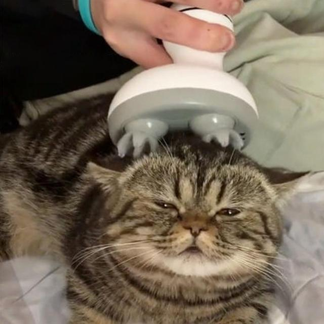 Cat Massage Tool Pet Intelligent Cats Automatic Rotate Electric Dragon Claw Han Charging Cat 3D Head Massager Omnidirectional